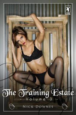 Downes, Nick - The Training Estate - Volume 3, e-bok
