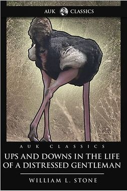 Stone, William L. - Ups and Downs in the Life of a Distressed Gentleman, ebook