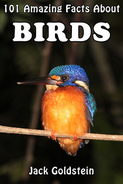 Goldstein, Jack - 101 Amazing Facts About Birds, ebook