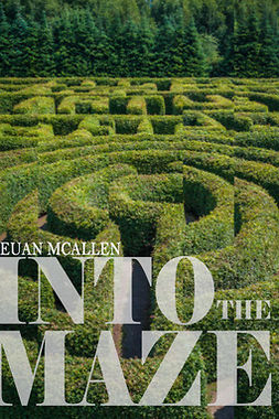 McAllen, Euan - Into The Maze, ebook