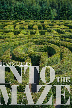 McAllen, Euan - Into The Maze, e-kirja