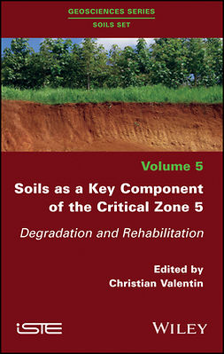 Valentin, Christian - Soils as a Key Component of the Critical Zone 5: Degradation and Rehabilitation, ebook