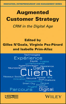 N'Goala, Gilles - Augmented Customer Strategy: CRM in the Digital Age, ebook