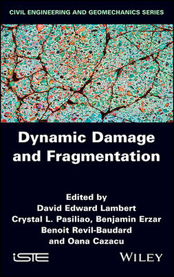 Cazacu, Oana - Dynamic Damage and Fragmentation, ebook