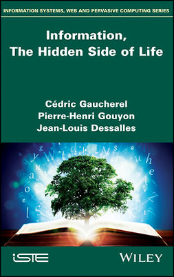 Dessalles, Jean-Louis - Information, The Hidden Side of Life, ebook