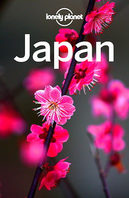 Planet, Lonely - Lonely Planet Japan, e-kirja