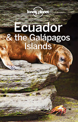 Albiston, Isabel - Lonely Planet Ecuador & the Galapagos Islands, e-bok