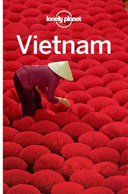 Atkinson, Brett - Lonely Planet Vietnam, e-bok