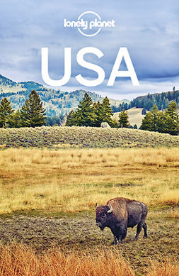 Armstrong, Kate - Lonely Planet USA, e-kirja