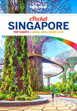 Planet, Lonely - Lonely Planet Pocket Singapore, e-bok