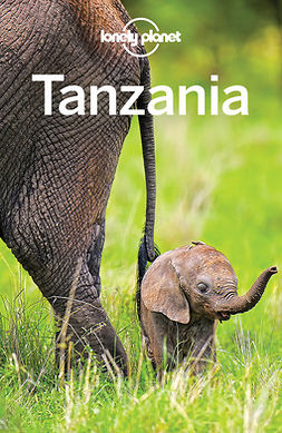 Bartlett, Ray - Lonely Planet Tanzania, ebook