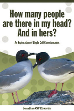 Edwards, Jonathan C.W. - How Many People Are There In My Head? And In Hers?, ebook