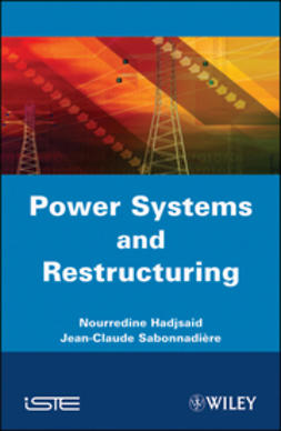 Hadjsaïd, Nouredine - Power Systems and Restructuring, e-kirja