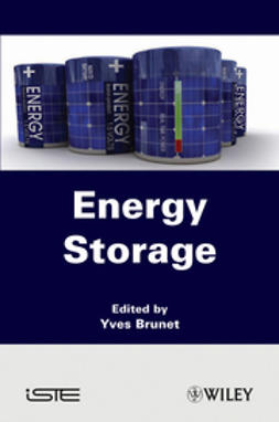 Brunet, Yves - Energy Storage, e-bok