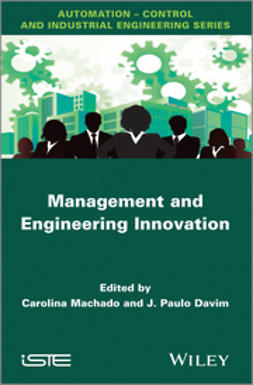 Davim, J. Paulo - Management and Engineering Innovation, ebook
