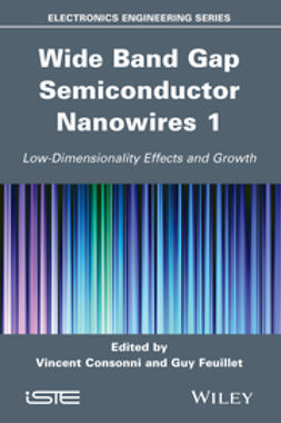 Consonni, Vincent - Wide Band Gap Semiconductor Nanowires 1: Low-Dimensionality Effects and Growth, ebook