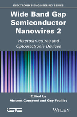 Baptist, Robert - Wide Band Gap Semiconductor Nanowires 2: Heterostructures and Optoelectronic Devices, ebook