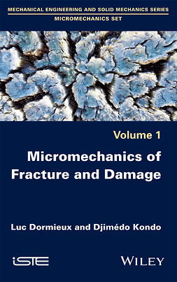 Dormieux, Luc - Micromechanics of Fracture and Damage, e-kirja