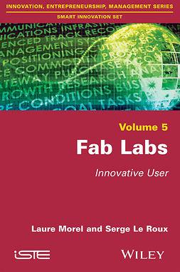 Morel, Laure - Fab Labs: Innovative User, ebook
