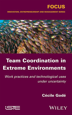 Godé, Cécile - Team Coordination in Extreme Environments: Work Practices and Technological Uses under Uncertainty, ebook