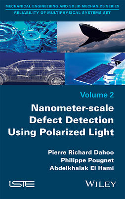 Dahoo, Pierre Richard - Nanometer-scale Defect Detection Using Polarized Light, ebook