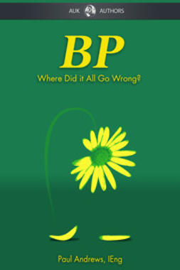Andrews, Paul - BP - Where Did it All Go Wrong?, e-bok