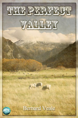 Veale, Bernard - The Perfect Valley, ebook