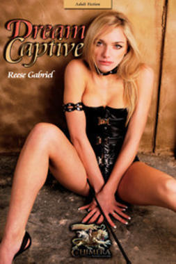 Gabriel, Reese - Dream Captive, ebook