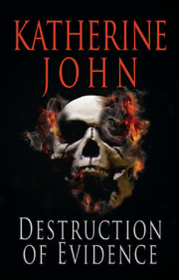 John, Katherine - Destruction of Evidence, ebook