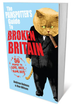 Holmes, Andrew - The Painspotter's Guide to Broken Britain: 50 People to Love, Hate, Blame, Rate, ebook