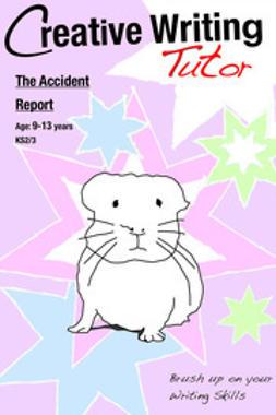 Jones, Sally - The Accident Report, ebook
