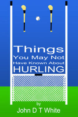 White, John DT - 101 Things You May Not Have Known About Hurling, e-kirja