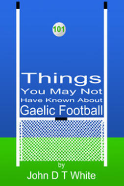 White, John DT - 101 Things You May Not Have Known About Gaelic Football, e-kirja
