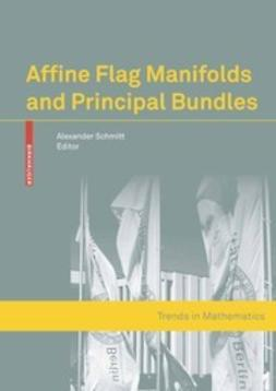 Schmitt, Alexander - Affine Flag Manifolds and Principal Bundles, ebook