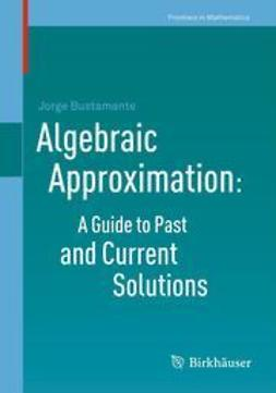 Bustamante, Jorge - Algebraic Approximation: A Guide to Past and Current Solutions, e-bok