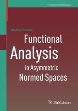 Cobzaş, Ştefan - Functional Analysis in Asymmetric Normed Spaces, e-bok