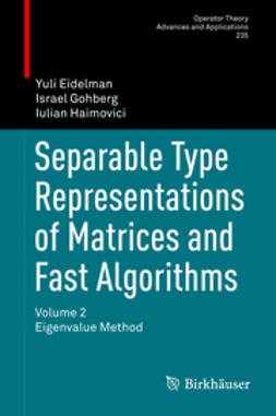 Eidelman, Yuli - Separable Type Representations of Matrices and Fast Algorithms, ebook
