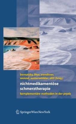 Ausserwinkler, Michael - Nichtmedikamentöse Schmerztherapie, ebook