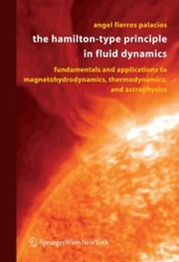 Palacios, Angel Fierros - The Hamilton-Type Principle in Fluid Dynamics, ebook