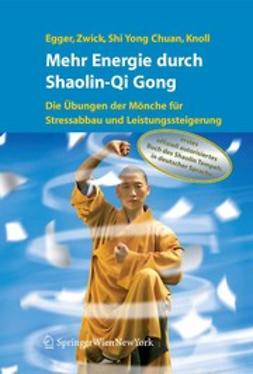 Bartko, Sathya - Mehr Energie durch Shaolin-Qi Gong, ebook
