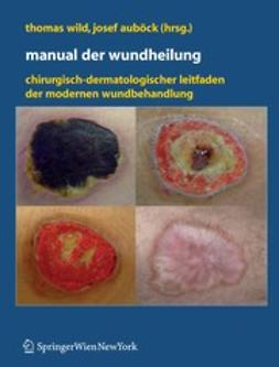 Auböck, Josef - Manual der Wundheilung, ebook