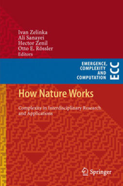 Zelinka, Ivan - How Nature Works, ebook