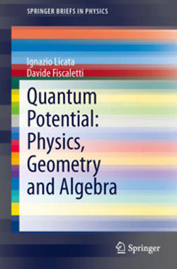 Licata, Ignazio - Quantum Potential: Physics, Geometry and Algebra, ebook