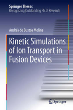 Molina, Andrés Bustos - Kinetic Simulations of Ion Transport in Fusion Devices, ebook