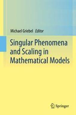 Griebel, Michael - Singular Phenomena and Scaling in Mathematical Models, e-bok