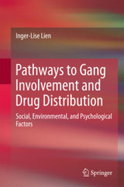 Lien, Inger-Lise - Pathways to Gang Involvement and Drug Distribution, ebook