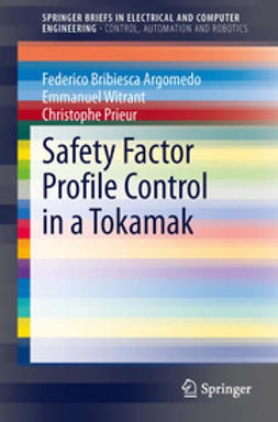 Argomedo, Federico Bribiesca - Safety Factor Profile Control in a Tokamak, ebook