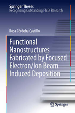 Castillo, Rosa Córdoba - Functional Nanostructures Fabricated by Focused Electron/Ion Beam Induced Deposition, ebook