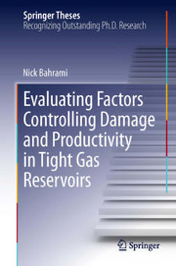 Bahrami, Nick - Evaluating Factors Controlling Damage and Productivity in Tight Gas Reservoirs, ebook