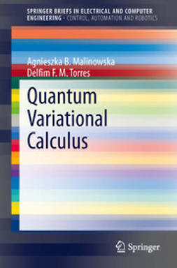 Malinowska, Agnieszka B. - Quantum Variational Calculus, ebook